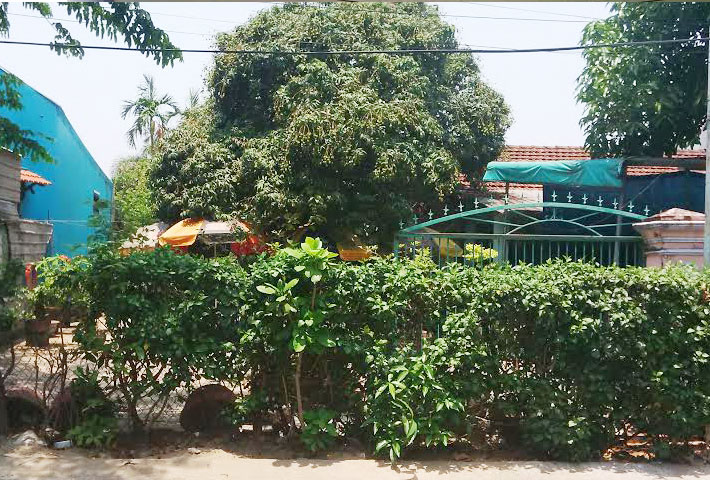 Đất mặt tiền đường Võ Thị Sáu, thành phố Quảng Ngãi